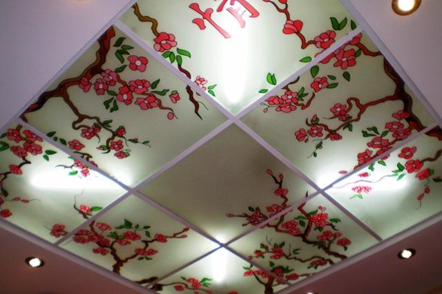Потолок из акрила с рисунком