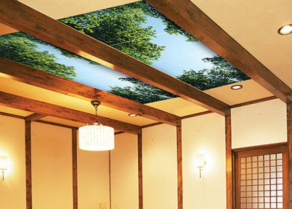 комбинирование материалов на потолке фото