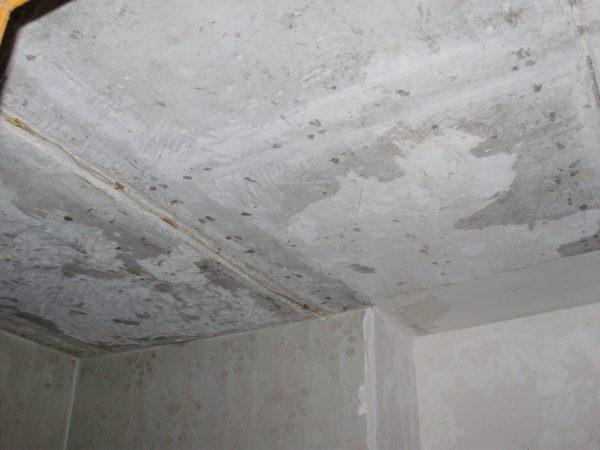 Потолок очищенный от старой побелки