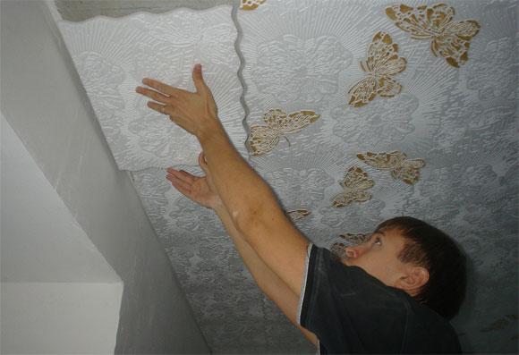 плиты пвх для потолка характеристика