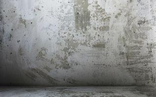 Kak-pravilno-i-bystro-pokrasit-betonnuju-stenu30.jpg