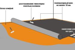 Схема укладки линолеума на фанеру