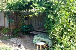 Металлическая беседка, покрытая диким виноградом.
